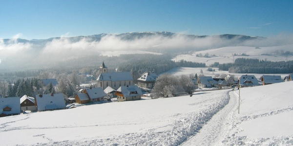 Titisee im Winter