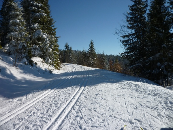Schönenbacher-Spur