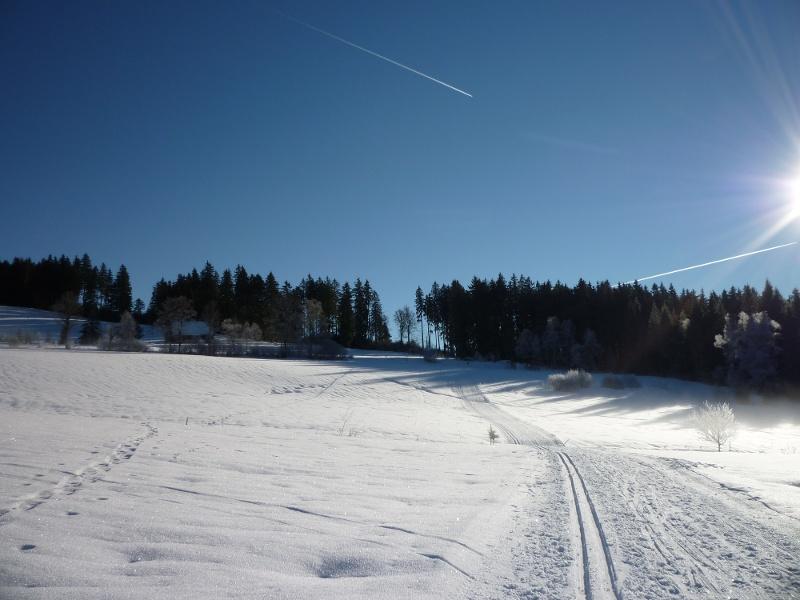 Fischbach-Spur