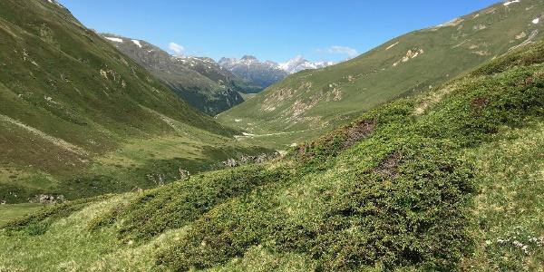 Blick zurück ins Val Chamuera