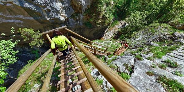 Bärenschützklamm, Steiganlage