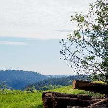 Etappe 1 / Tipp Start auf dem Fohrenbühl und Ende in Lauterbach