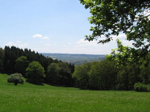 Leichte Wanderung um den Baumberg