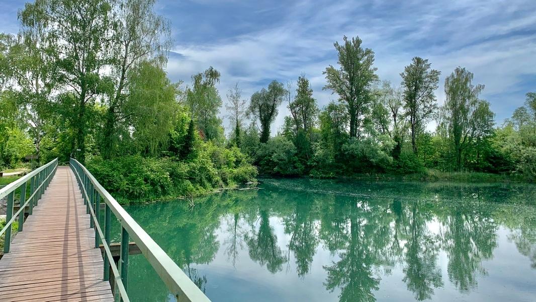 Von Durbach durch Ried und Rheinauen