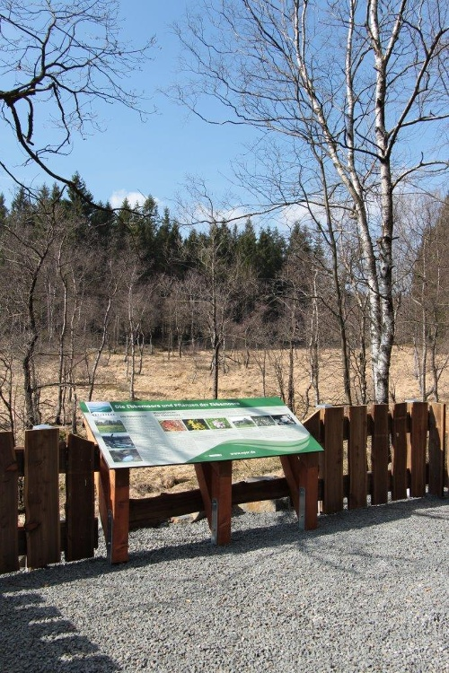 Faszination Ebbemoore - Erlebniswanderung entlang des Quellgebietes des Lister
