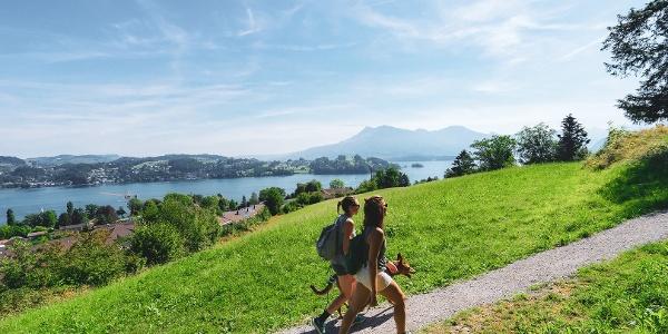 Wandern im Gebiet Bireggwald bei Luzern