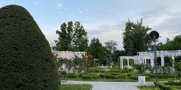 Parcul Rozelor, Timișoara