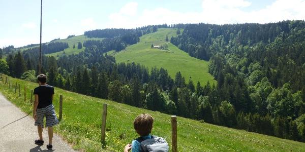 Blick zur Hirnbeinalpe und der Aufstiegsflanke zur Salmaser Höhe