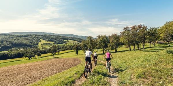 Wiental-Elsbeere-Genuss-Tour _ MTB Trekking durch den westlichen Wienerwald