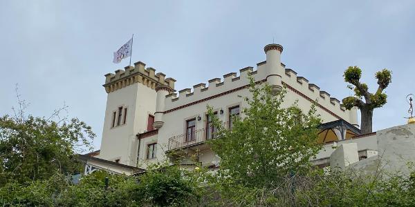 Friedensburg in Radebeul