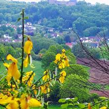 Burg Lichtenberg, 24. Mai 2020 10:31:54