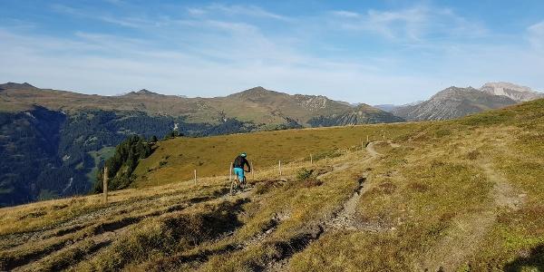 Ochsenalp Trail