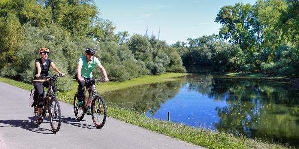 Radeln entlang der Rheinauen auf dem Rheinradweg