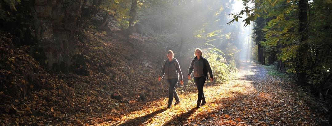 Wanderer im Zwielicht