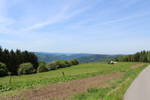 Rund um den Schomberg in Wildewiese