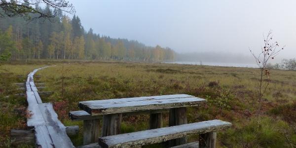 Tastulanjärven luontopolku, Kaustinen