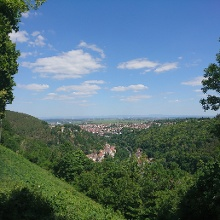 Ausblick von der Limburg
