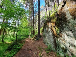 Foto Ruhige Pfade unterhalb der Rabensteine