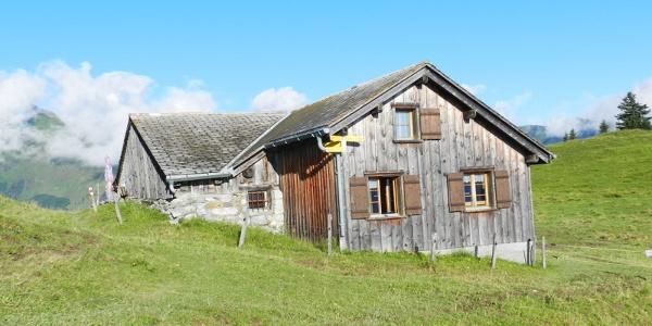 Alp Maton