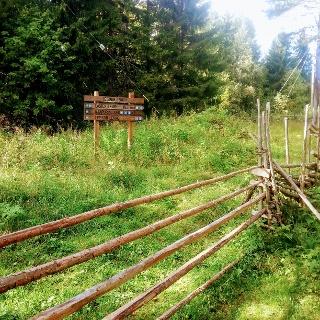 Naapurinvaaran luontopolkua, Vuokatti Finland