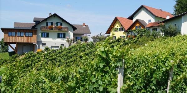 Weingut Hernach vlg. Roschitz