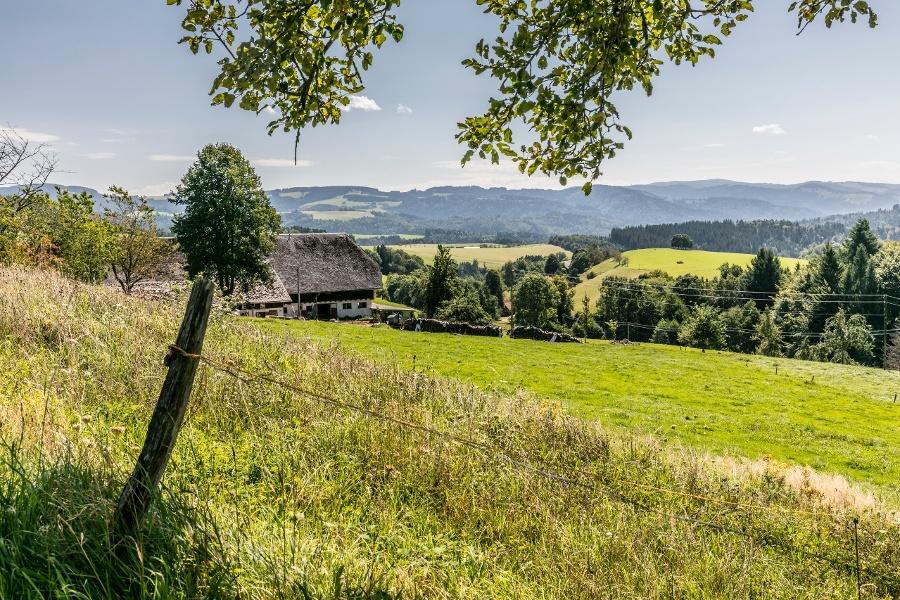 Bossenbühl-Rundweg