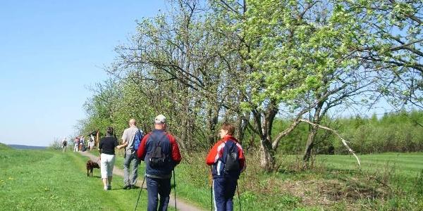 Wanderung in Schellerhau