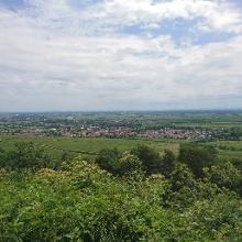 Ausblick von der Michaelskapelle
