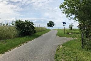 Foto Bischofsweg von Stolpen nach Rennersdorf-Neudörfel