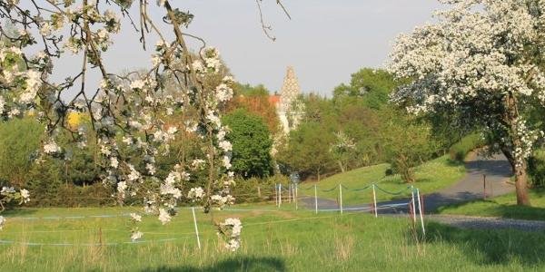 Schloss Heynitz, Foto: E.v.W.