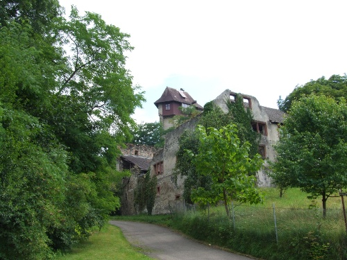 Von Burkheim am Kaiserstuhl zur Burg Sponeck