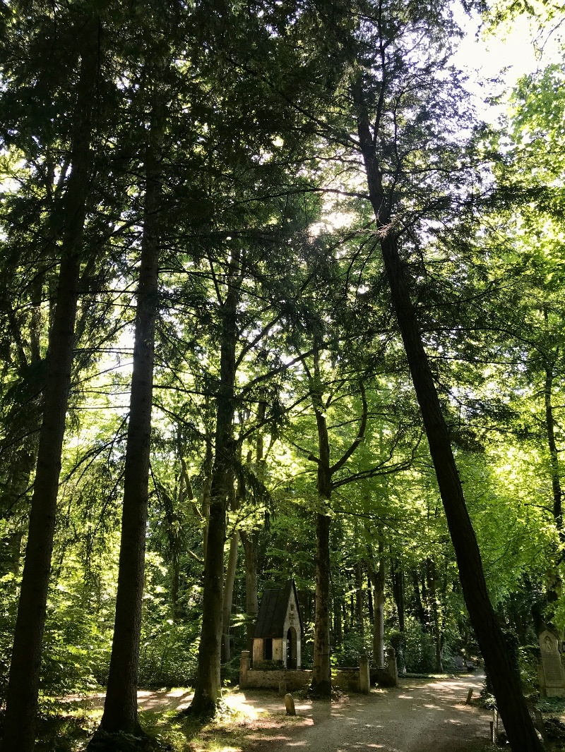Waldfriedhofimpressionen