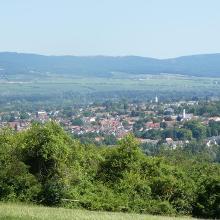 Blick über Ingelheim mit Burgkirche zum Taunus und Rheingau