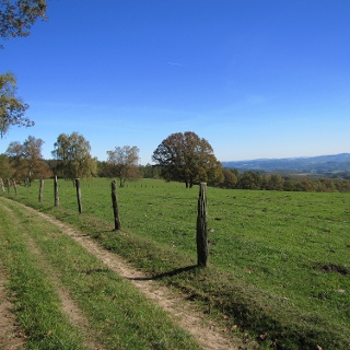 Aussicht bei Windhausen im Herbst