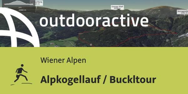 Trailrunning-Strecke in den Wiener Alpen: Alpkogellauf / Buckltour