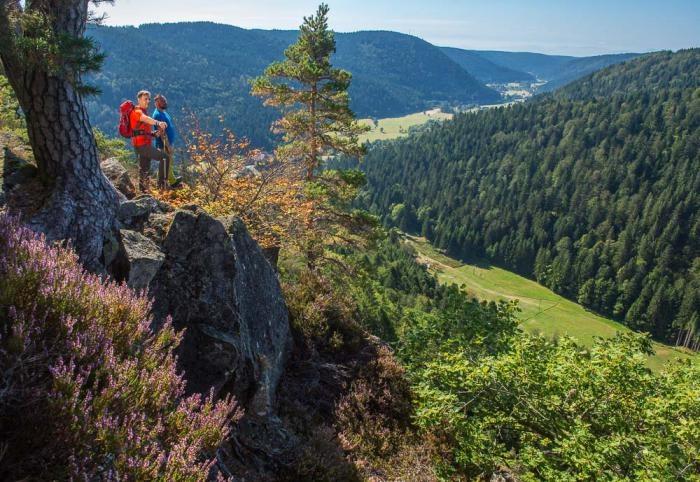 18 Wolpadingen Albstausee Bildsteinfelsen Berg Dachsberg