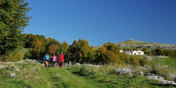 Escursione a Piedi in Lessinia