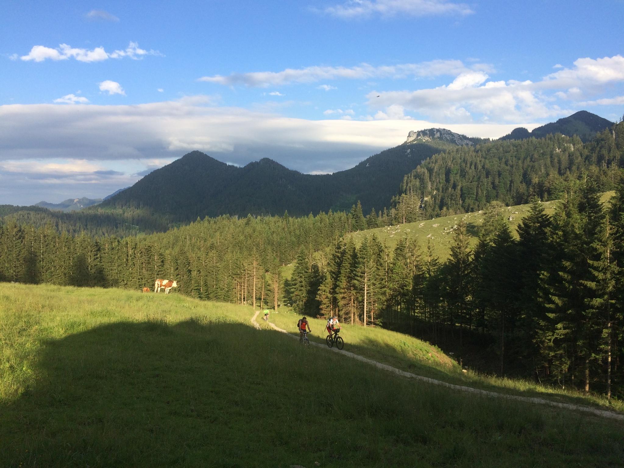 Blick ins Rottauer Tal