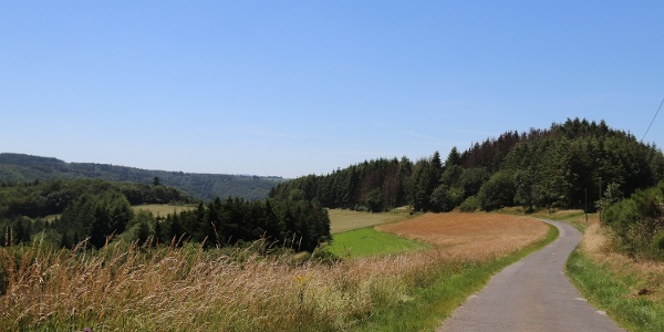 Ausblick Wanderweg aus Nitztal