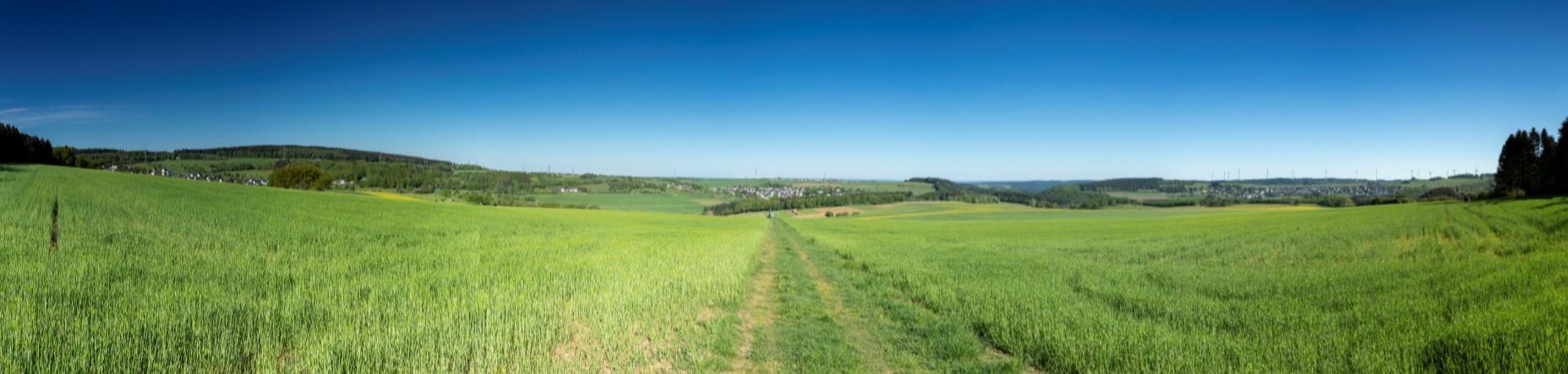 Foto: Panoramablick über die Höhen des Hochwalds