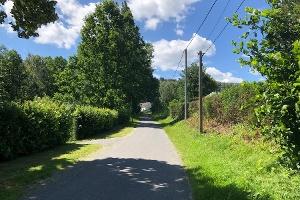 Foto Weg beim Waldbad Polenz