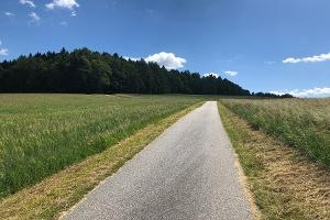 Foto Weg von Krumhermsdorf zum Unger