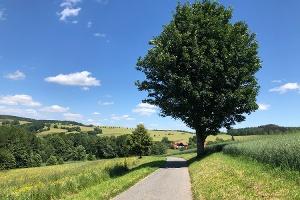 Foto Von Rugiswalde nach Langburkersdorf