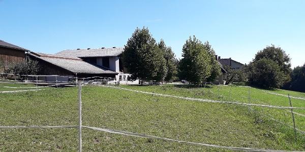 Weidefläche beim Bauernhof Herunter