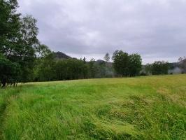 Foto Offene Wiesenlandschaft auf dem Weg nach Ottendorf