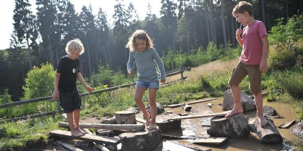 """Wasserplatz Natur-Erlebnis-Spielplatz """"Kleiner Wisent"""""""