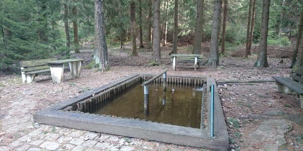 Wassertretbecken Geyer