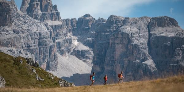 Pascolo in quota e panoramica sulle Dolomiti di Brenta