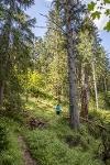 Wanderung durch den Wald - @ Autor: Julian Knacker - © Quelle: Pfronten Tourismus