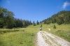 Wanderweg durch´s Himmelreich auf dem Kienberg - @ Autor: Julian Knacker - © Quelle: Pfronten Tourismus